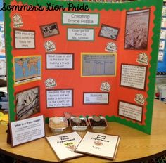 Sommer's Lion Pride: Science Fair 2016 - What type of soil is the best for creating a fossil? science project