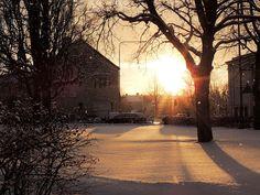 Vinterljus | Flickr - Photo Sharing!