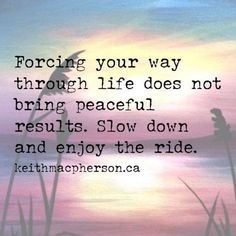 Forcing Your Way Through life does not bring peaceful results. Slow down and enjoy the ride.