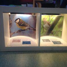 På Sinnestorget kan vi även få höra fåglarnas läten med qr-koder! #utforskande #digitalteknik #qr-koder #lärmiljöer #inspirerande #förskola #pedagogik #fåglar #kvitter #reggioemilia #preeschool #kindergarten #glömsta #vista #vårby #huddinge