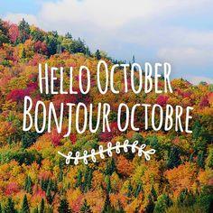 Experience the beauty of autumn in New Brunswick! // Vivement l'automne au Nouveau-Brunswick! #ExploreNB / Instagram