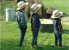 Little Amish boys