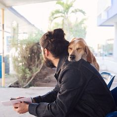 Busy waiting for the ferry to Guaymas this morning 😴 // maddie on things Mans Best Friend, Girls Best Friend, Best Friends, Friends Forever, I Love Dogs, Puppy Love, Cute Dogs, Animals And Pets, Cute Animals