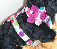Sparkly Polka Dot Adjustable Dog Harness ( FLOWER SOLD SEPERATELY) - size xxs, xs,s,m. $20.00, via Etsy.