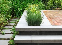 terrace, planter, steps - integrated