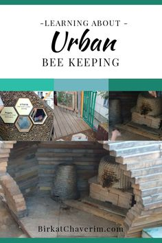 Learning about Urban Bee Keeping via Birkat Chaverim Jewish High Holidays, Simchat Torah, Bee Do, Entrance Sign, Yom Kippur, Educational Crafts, Rosh Hashanah, Children And Family, Bee Keeping