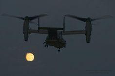 https://www.facebook.com/CombatAircraftMagazine/photos/a.156514791038513.27932.140704179286241/906714592685192/?type=1