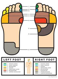 Foot reflexology infographic