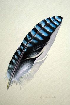future tattoo idea :) blue jay feather. This would be a perfect tattoo for my dad! He may be gone but I'll always have a piece of him with me.