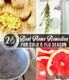 26 Best Home Remedies for Cold and Flu Season | Herbal Remedies and Recipes…