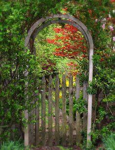 ~~Invitation… | arched gate entrance to a secret garden | by LindaR~~