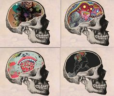 Artsy Skull Collage <3