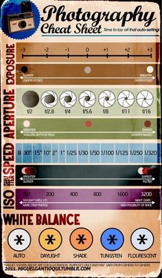 Conquering Manual Mode :: Photography Cheat Sheets