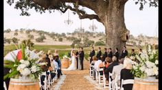 Elegant vineyard wedding starts at Rancho Victoria Vineyard #shabbychic #vineyardwedding
