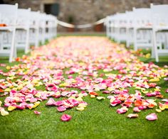 A petal-covered aisle makes for a pretty entrance. More pictures from this wedding: http://www.bhg.com/wedding/real/real-wedding-dessert-wedding/?socsrc=bhgpin073112petalcoveredaisle#page=16