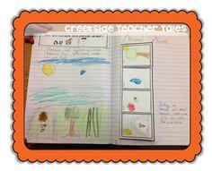 Science Interactive Notebook Freebies
