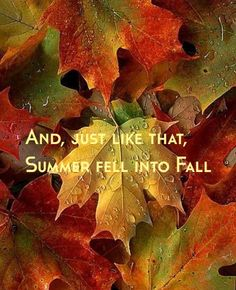 "~ ""And, just like that, Summer fell into Fall"" .... so true! ~ ""If the world seems cold to you, Kindle fires to warm it!"" ~"