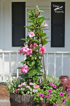 pink flowers planted in a whiskey barrel