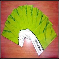 Spirulina Booklet