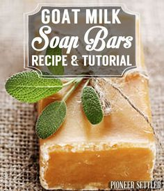 Goat Milk Soap Bars Tutorial (Excellent DIY Xmas Gift!) | How To Make Natural Milk - Easy Recipe by Pioneer Settler at http://pioneersettler.com/goat-milk-soap-recipe/