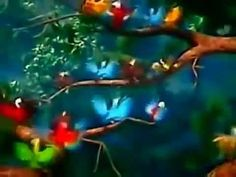 Happy Birthday, Rio Style! Cumpleaños Feliz! - YouTube.FLV - Videos Whatsapp