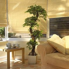 Stylish Artificial Japanese Fruticosa Tree, Luxury Replica/Fake Indoor Plant - 5ft 4 Inches/165cm Tall. Perfect for Home or Office Vert Lifestyle http://www.amazon.co.uk/dp/B00NEYW8YK/ref=cm_sw_r_pi_dp_-jTPub0C4DEYT