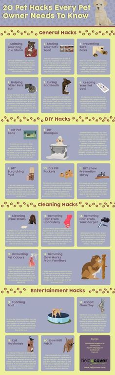 20 Pet Hacks Every Pet Owner Needs To Know 20 Pet Hacks Every Pet Owner Needs To Know Source by The post 20 Pet Hacks Every Pet Owner Needs To Know appeared first on Coulson Puppies. Puppy Care, Pet Care, Pet Dogs, Dogs And Puppies, Pet Pet, Game Mode, Pet Sitter, Food Dog, Dog Care Tips