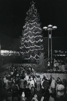 """In Southwest Morrison Street took on the """"magic"""" of Christmas decorating that turned it into Portland's Miracle Mile at dusk. Join us on a trip down memory lane with these vintage holiday photos from yesteryear. (The Oregonian Archives) Christmas Decorations, Christmas Tree, Holiday Decor, Oregon City, Vintage Holiday, Holiday Photos, Good Old, Hanukkah, Vintage Photos"""