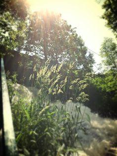 Locatie: Watervallen van Coo, België Datum: Juli 2013 Bron: Debbie Vermeer Wow, fantastisch mooie foto.