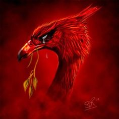 "In its natural environment, this bird of prey is said to emit a cry of, ""Rawk, rawk. Liverpool Bird, Liverpool Tattoo, Liverpool Home, Liverpool Football Club, Football Team, Ynwa Liverpool, Liverpool Players, Liverpool Fc Wallpaper, Liverpool Wallpapers"