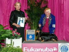 In 2003 Wyndam Field Dachshunds became our dream to show and breed quality miniature longhair dachshunds from outstanding stock.  At this time we have multiple Champions and Grand Champions, many from our own breeding program.  We believe in testing for genetic problems and in focusing on outstanding temperaments. We have Eukanuba and specialty winners.  You can find our puppies in many colors and some also as brindles.  Red, Black and Tan, Black and Cream, Chocolate and Cream are the main…