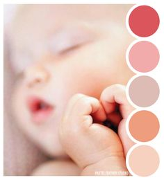 Pastel Feather Studio:   BABY BLUSH - color palette    ►more find here: pastefeatherstudio.blogspot.com
