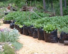 grow bags: As a nursery, I end up with lots of peat moss and soil mix bags that are tough to get rid of - they can be recycled at the garbage dump, but seeing as