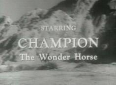 Like a streak o' lightening flashing cross the sky  Like the swiftest arrow whizzing from a bow  Like a mighty cannon ball he seems to fly  You'll hear about him everywhere you go  The time will come when everyone will know the name of.....  Champion the Wonder Horse  Champion the Wonder Horse