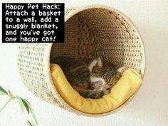Homemade Hacks