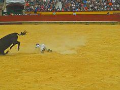 feria del toro de castellon 2013