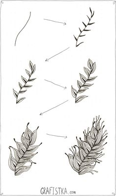 Как нарисовать перо в стиле дудлинг, 4