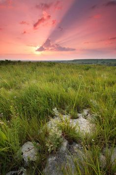 Flint Hills, Kansas.  Different parts of Kansas are really beautiful in their own different, spare way.