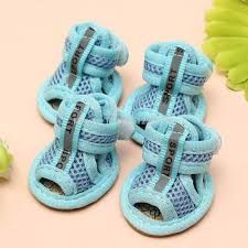 Resultado de imagen para zapatos para perros pequeños