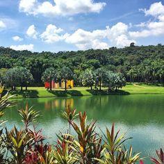 Arte contemporânea se encontra com a natureza em Inhotim, museu a céu aberto localizado na cidade de Brumadinho, Minas Gerais. Clique da @beatrizalonso_ #VoeGOL