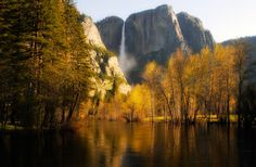 Gold in California by Greg McLemore