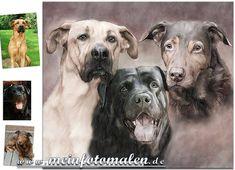 Dog Pet Portrait Hunde Portraits nach Motiv oder Fotovorlage