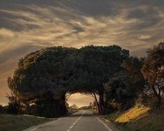 estrada no Alentejo