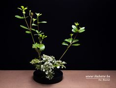 Traditional Sogetsu Ikebana Arrangement - Online course of Ilse Beunen