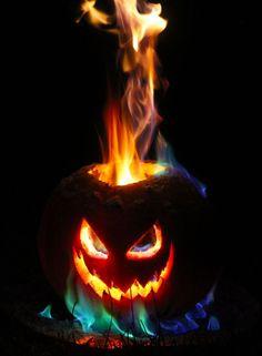 "DIY flamethrower pumpkin, ""hot coals"", intestines, head in jar, ghost portraits, and more."