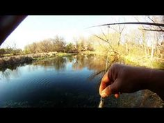 Scouting a Feeder Creek - Stocker Trout Fishing Stocker Trout Fishing