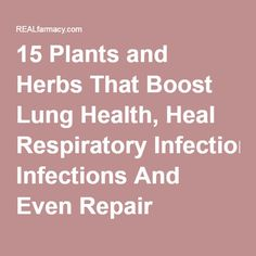 15 Plants and Herbs That Boost Lung Health, Heal Respiratory Infections And Even Repair Pulmonary DamageREALfarmacy.com | Healthy News and Information