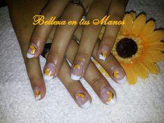 Mariposas hermosas