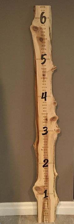 Double live edge wood growth chart Wood-burning