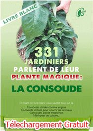 331 jaridiniers parlent de leur plante magique : la consoude
